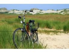 Inselerkundungstour / Geführte Radwanderung mit Peer Agena