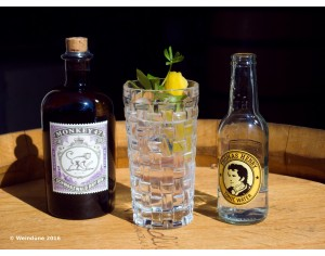 Gin - Tasting (jeden Mittwoch um 20:45 Uhr)