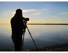 Vogelbeobachtung mit Sonnenuntergang